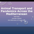 Image for Animal Transport and Pandemics Across the Mediterranean