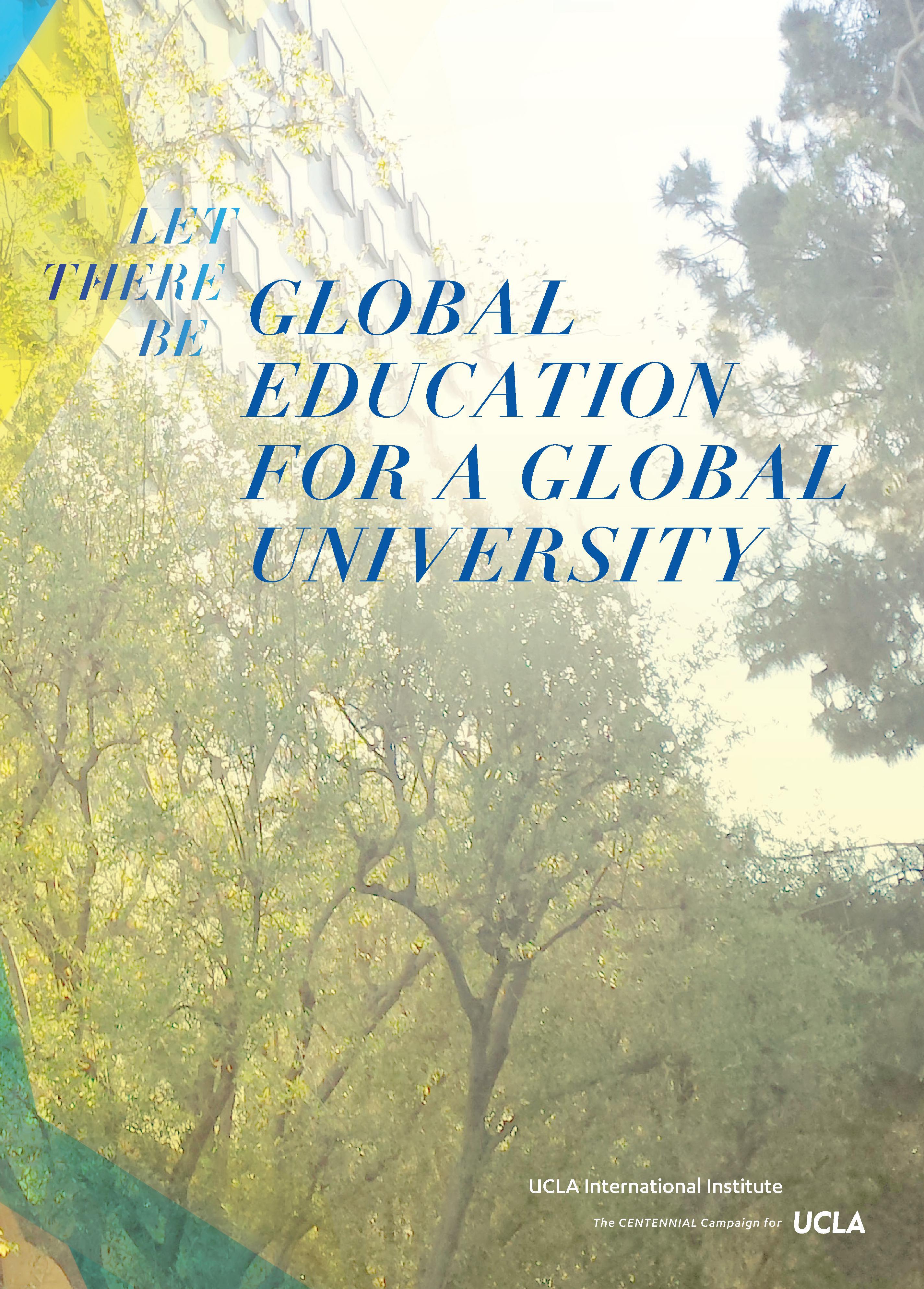 Download International Institute Briefing Brochure