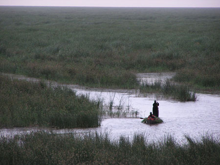 The Marshes of Mesopotamia: Dried, Restored, Will it Last?