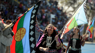 Image for Understanding the Mapuche struggle