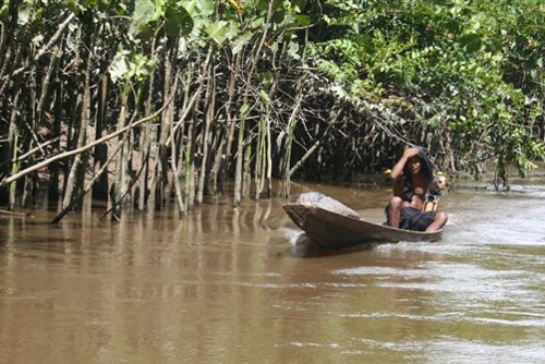 Conservation consternation: Prof studies Amazon's forest people