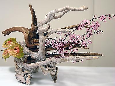 Ikebana Flowering